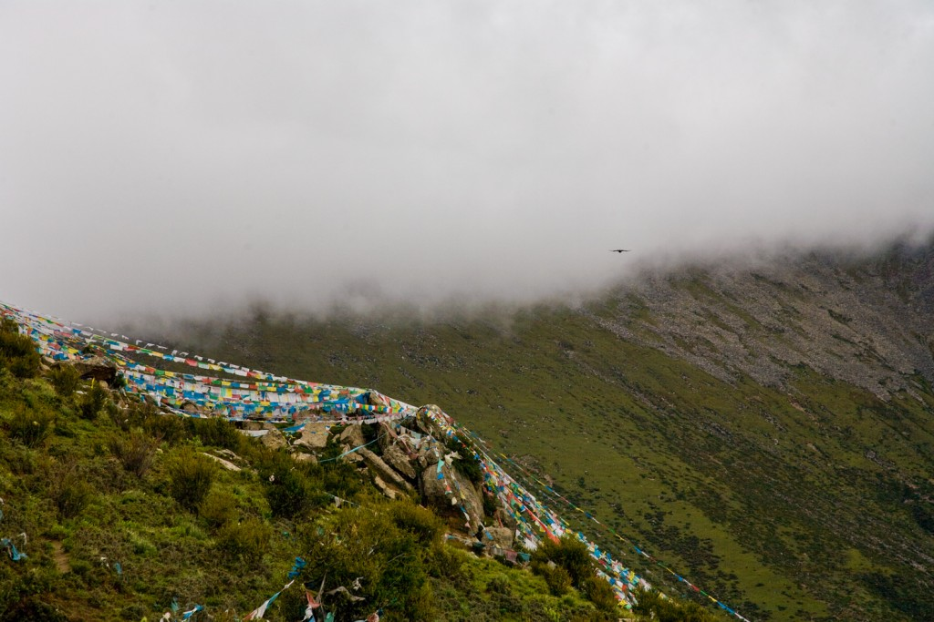 Bird In Flight ~ Above Longchenpa's Hermitage ~ Gangri Tokar ~ Tibet